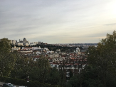 Uitzicht over het paleis en de kathedraal